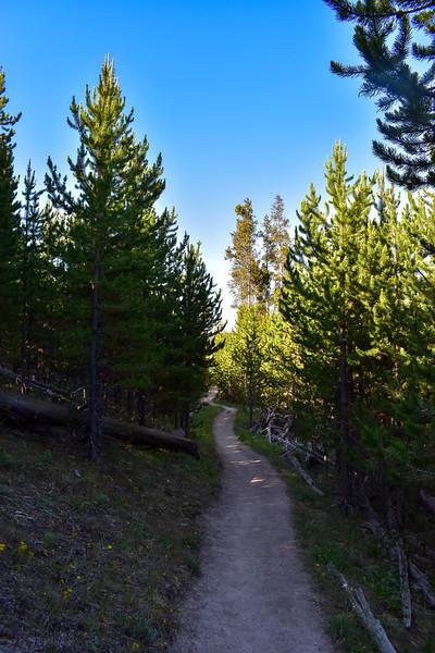 Bunsen Peak Trail -- 7,300'