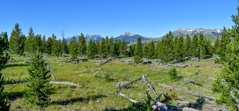 Bunsen Peak Trail -- 7,440'