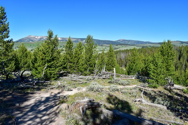 Bunsen Peak Trail -- 7,370'