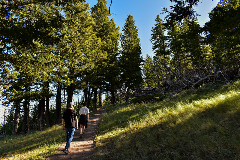 Bunsen Peak Trail -- 7,800'