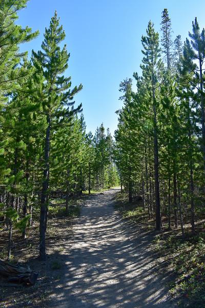Bunsen Peak Trail -- 7,460'