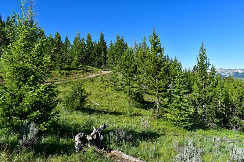 Bunsen Peak Trail -- 7,620'