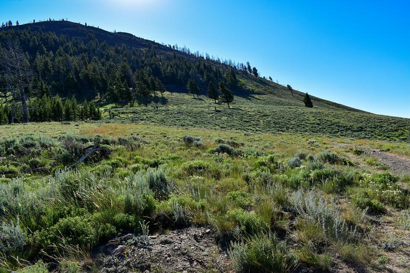 Bunsen Peak Trail -- 7,650'