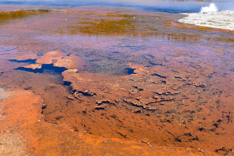 Steady Geyser & Black Warrior Lake