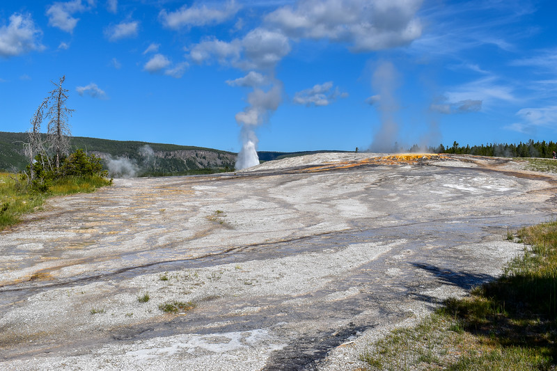 Giantess Geyser (w/ erupting Beehive Geyser)