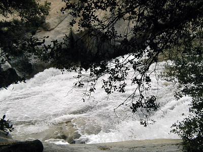 Willow Creek Trail. March 16, 2004. Near Bass Lake, California