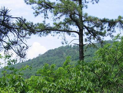 Halfmoon Hike 05/2006