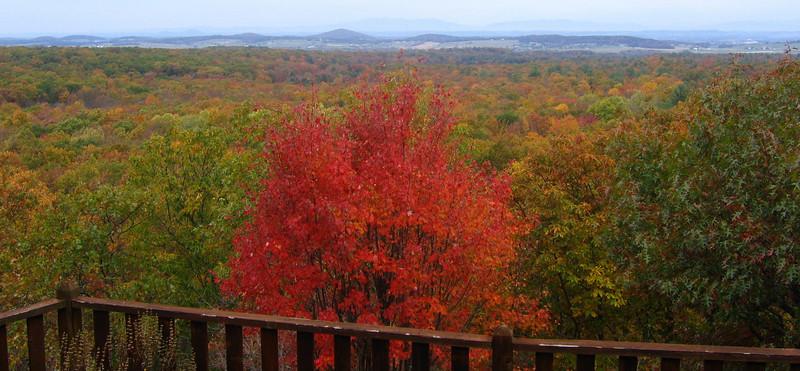 View from High Laurel Inn