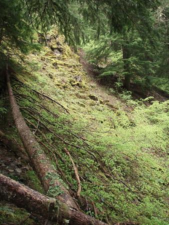 Fish Creek Mountain