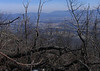 View east from Strickler Knob