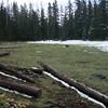 Cottonwodd Meadow  One