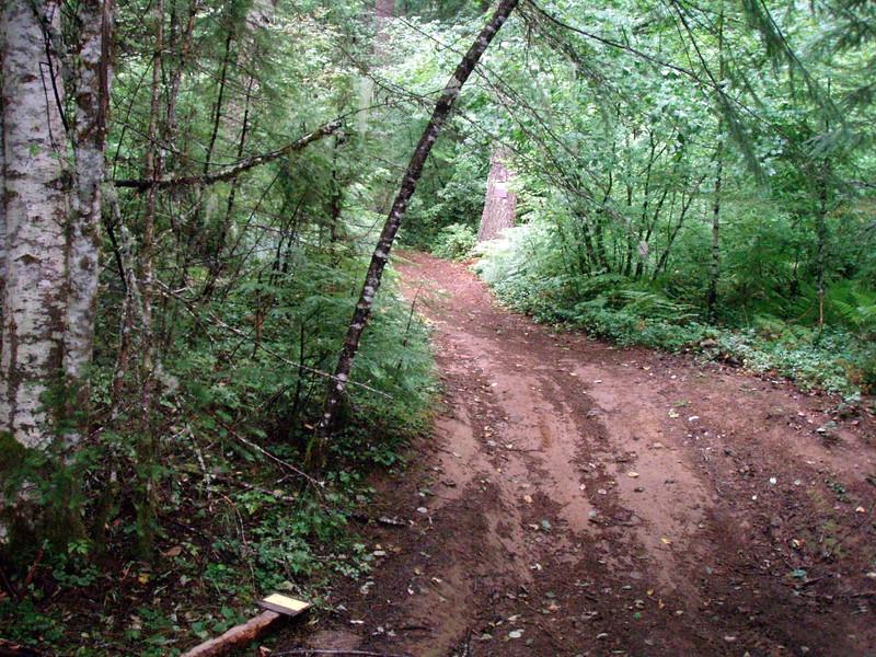 Huxley Lake Trailhead from 4611 Road