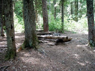 Battle Creek Shelter campsite (shelter is gone now)