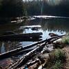 Timber Lake