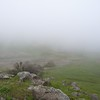 2010 03 07 Russian Ridge 073