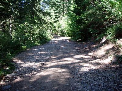 Road 4697 past the trailhead