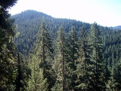 Whetsone Mountain