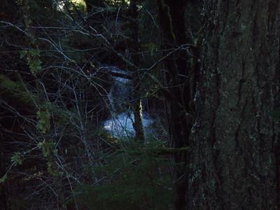 Waterfall on Dickey Creek