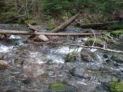 Dickey Creek trail crossing
