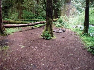 Campsite area #2