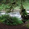 River next to campsite #2