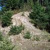 Old Trailhead