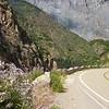 Highway 180 Kings Canyon National Park, California
