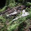 Plane Wreckage- Landing gear