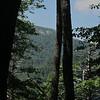 Mary's Rock from Buck Ridge