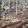 Sybille at Smith Run crossing  sans snow (3/4)