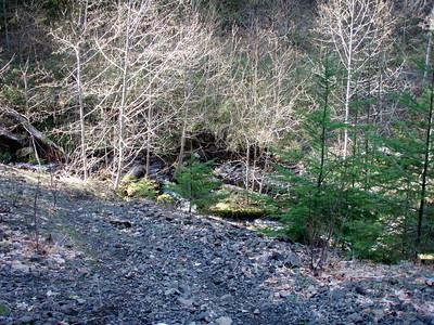 Fish Creek - Calico Road