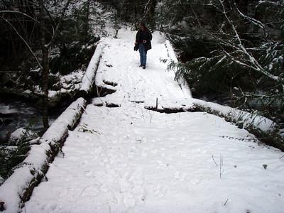 The broken bridge over cripple creek