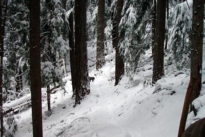 The winter wonderland!