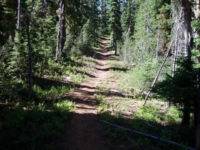 Pacfic Coast Trail near Olallie Meadow