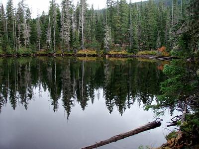 Brook Lake