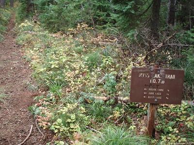 Russ Lake trail junction