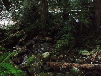 Plaza Creek