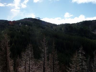 Mt Jefferson peeking over the top