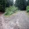 Trailhead for Thunder Mountain Trail