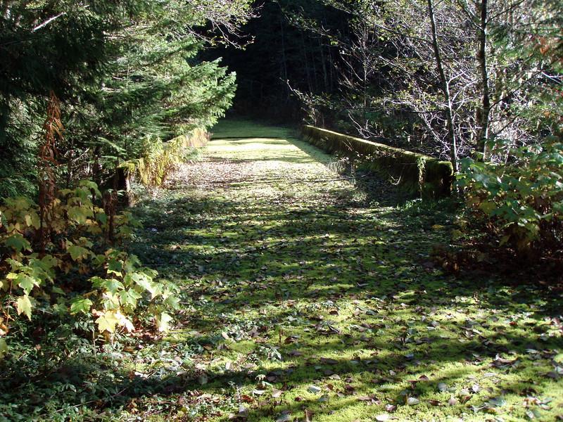 The bridge over cedar creek and wash creek (they converge right before the bridge)