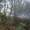Long Ridge_0020