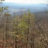 Fort Valley overlook view