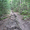 Storm damage to the trail from Irene