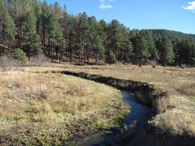 Jemez Mtns. - O'Neil Landing-Ojito Canyon-Ojito Landing-Lower Cebolla Can. Hike  10-22-12