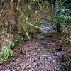 Whisky Creek