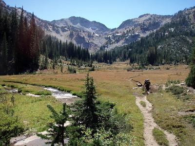 High elevation meadow - Elkhorn creek runs through it