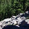 Rockslide on Gibson Lake trail