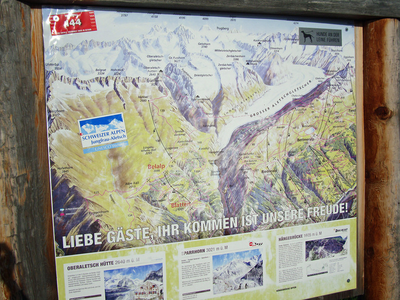 Msap of the Aletsch glacier area
