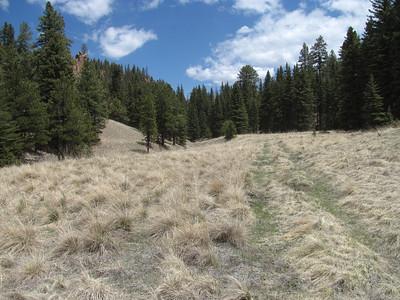 Jemez Mtns. - Calaveras Canyon Hike  5-13-13