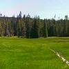 Black Wolf Meadows